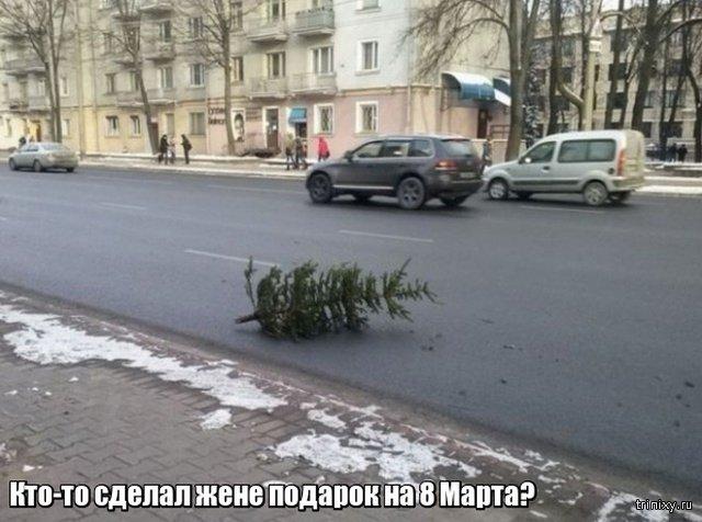 Весна уже пришла? Или пока еще нет? смешные картинки